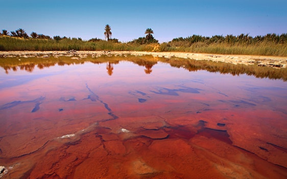 بحيرة الطرونه الحمراء