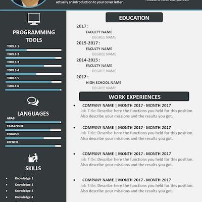 CV Expert English
