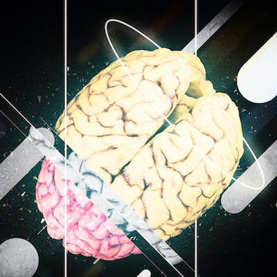 Essential: The brain is the Essential part of
