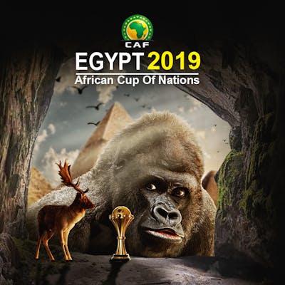 بطوله افريقيا المشاركة الرابعه